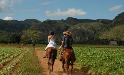 horse riding vinales