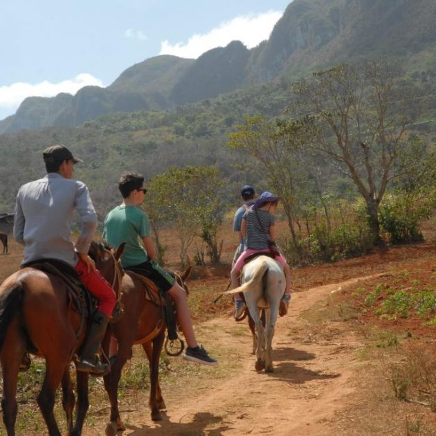 day trip to Vinales from Habana